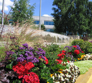 Commercial Landscaping Curb Appeal, How to choose a commercial landscaper