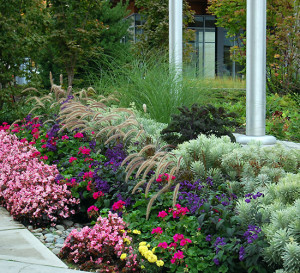 Commercial Planting Bed Maintenance